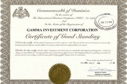 Сертификат GAMMA